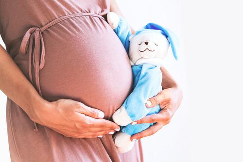 妊娠期の葉酸の必要性